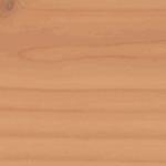 427 Amerikietiška eglė, šilko blizgesio, su apsaugine plėvele