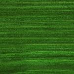 729 Eglės žalia