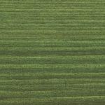9242 Eglės žalia