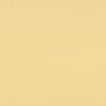 2204 Dramblio kaulas